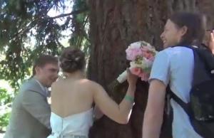 tree hugging bride