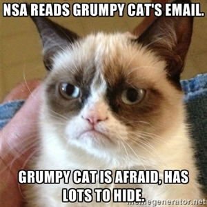 NSA SCANDAL GRUMPY CAT